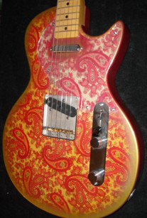 Pink Paisley Lesquire